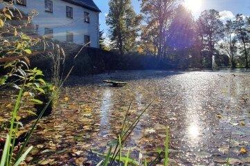 Der Schlamm des Dorfteichs, der auch durch das viele Laub im Herbst entsteht, soll kostengünstiger entsorgt werden, als geplant.
