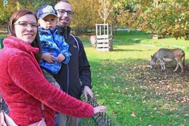 Goldener Herbst im Tierpark: Juliane, Benji und David (v. l.) sind extra aus Dresden nach Freiberg gekommen.