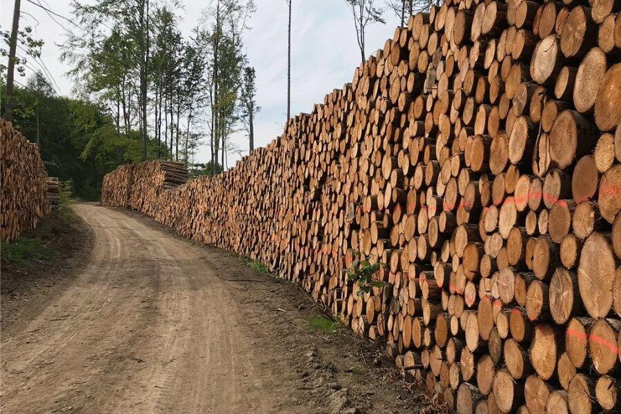Schnittholz wie hier in einem Wald bei Zwönitz im Erzgebirge ist inzwischen zum knappen Gut geworden. Eine Verordnung zum Holzeinschlag aus dem Bundesagrarministerium sorgt jetzt für Ärger.