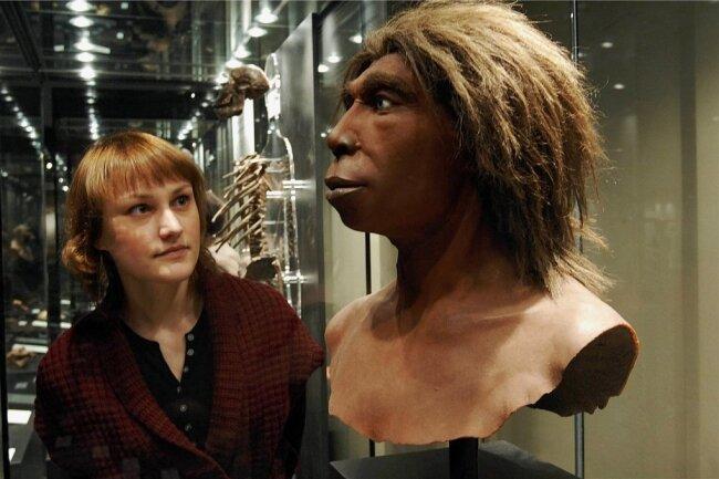 """Eine Besucherin betrachtet die Rekonstruktion eines Neandertalers in der Ausstellung """"Wege zum Menschen"""" im Museum für Naturkunde in Berlin, die dort 2009 anlässlich des 200. Geburtstages von Charles Darwin gezeigt wurde."""