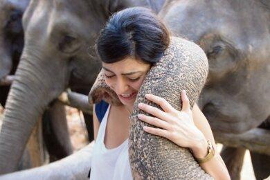 Vor allem weibliche Besucher mögen die Nähe zu den Elefanten - was offenbar auf Gegenliebe stößt.