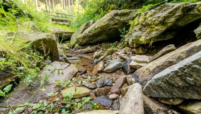 Vor der Einmündung in die Rote Pockau hat der Wagenbach im Marienberger Ortsteil Pobershau fast kein Wasser mehr.