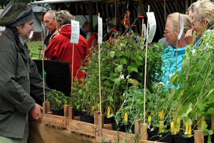 """<p class=""""artikelinhalt"""">Kräuterfrau Dorit Steidten (links) aus Lobsdorf beriet die Besucher zu Heil- und Gewürzpflanzen.  </p>"""