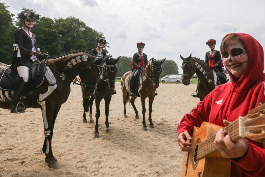 """Wegen Corona: Pferdesportler feiern """"Faszination Pferd"""" ein Jahr verspätet"""