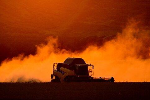 Bund stellt 340 Millionen Euro Nothilfe für Bauern in Aussicht