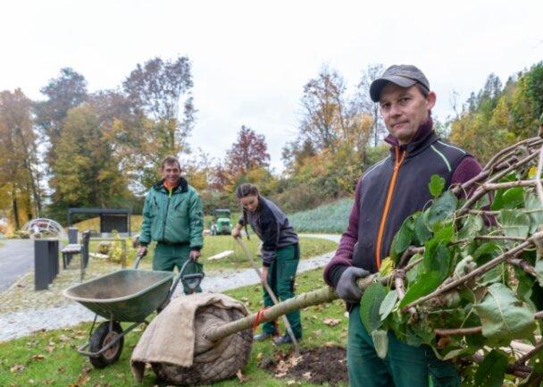 Jan Schreier, Klara Kluge und Thomas Fischer (v. l.), Mitarbeiter einer Gornauer Firma, haben jüngst die letzten Bäume gepflanzt.