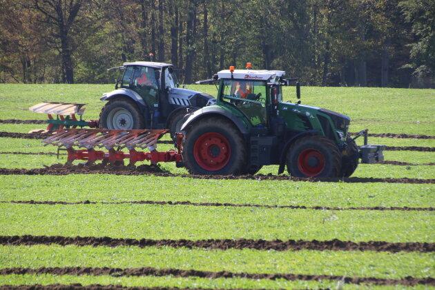 Elf Traktor-Pflüger nahmen an den Meisterschaften teil.