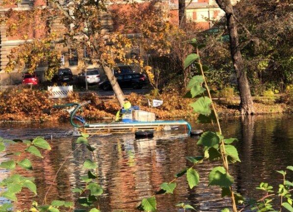 Von einem Schwimmbagger aus wird der Schlamm mit einer Schnecke aus dem Teich geholt und über ein Saugrohr abtransportiert.