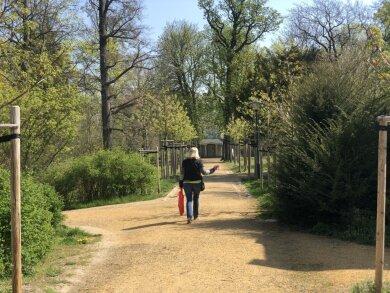Die Zwickauer Parks wurden am Freitag nach vierwöchiger Sperrung wieder geöffnet.
