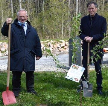 Brachten den Baum in den Boden: Thomas Firmenich und Matthias Rößler (v. l.).