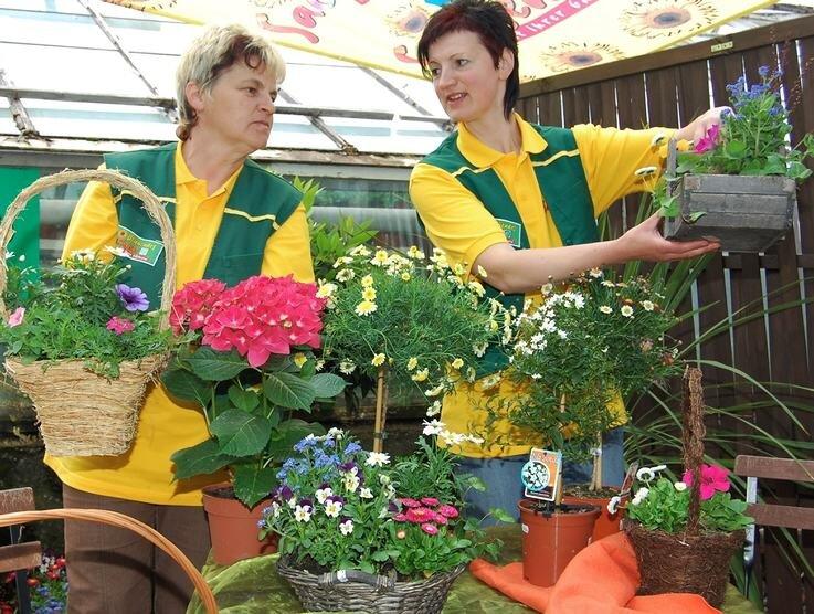 Für blühende Balkon- und Beetpflanzen interessierten sich die Besucher in der Gärtnerei Schöne besonders. Die Mitarbeiterinnen Ulla Rabe (l.) und Heike Herklotz suchten passende Angebote aus.