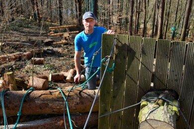 Inhaber Alexander Persigehl steht im Kletterwald an der Talsperre Kriebstein an einem der gefällten Bäume, die bislang Teil eines Parcours waren und an denen eine Plattform befestigt war.