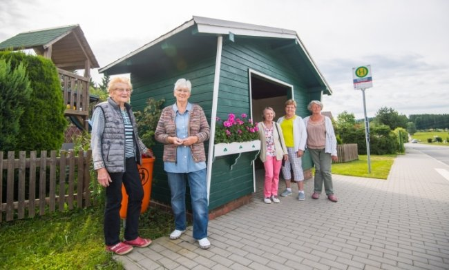 Isolde Härtel, Renate Leonhardt, Gudrun Weidlich, Karin Seidel und Annelore Kerst (von links) sind die Burkhardtsgrüner Parkfrauen.