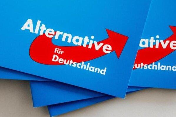 AfD nach Hessen-Wahl in allen deutschen Landesparlamenten vertreten