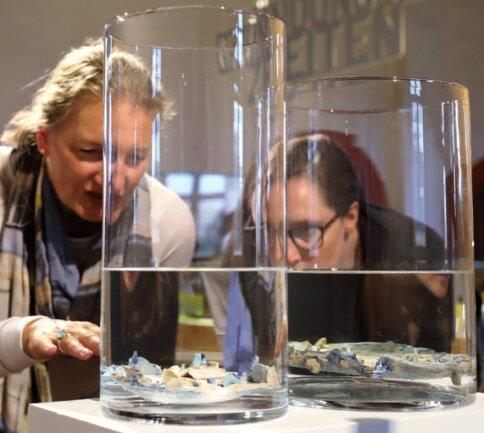 """Laura Selenz aus Köln (r.) und Martina Leicher (aus Bonn) machen derzeit Urlaub im Erzgebirge und diskutierten angeregt und fasziniert über die reizvollen Distanzen, die von der """"Fata Morgana - distance breaker"""" ausgehen."""