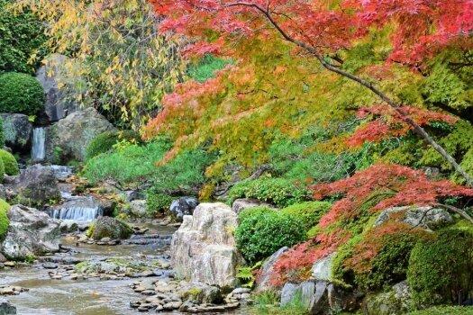 Von Menschenhand erschaffen: der Teichgarten Yoko-en auf dem Gelände des Untertempels Taizo-in in Kyoto.