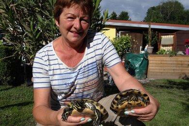 Gabriele Bergler mit ihren beiden Schildkröten.