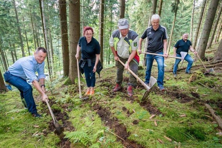 Revierförster Thomas Baader (3. v. l.) zeigte Torsten Herbst (links), Ulrike Harzer und Michael Rudolph (4. v. l.), wie mit einer sogenannten Wiedehopfhacke der Humusboden freigelegt wird.