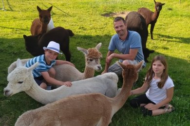 Die Alpakas genießen die Streicheleinheiten von Dirk Rabe und seinen beiden Kindern Hannes und Tessa.