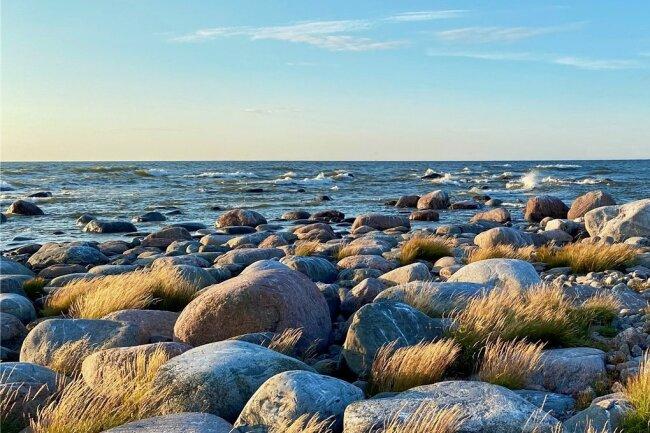 Kap Purekkari ist Estlands nördlichste Festlandsspitze. Hier oben kreuzen sich Wellen aus West und Ost.