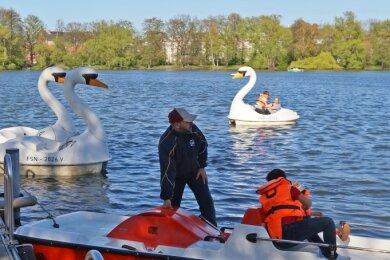 Die Tretboote in Form des Zwickauer Wappentieres werden besonders von Kindern und Verliebten ausgeliehen.