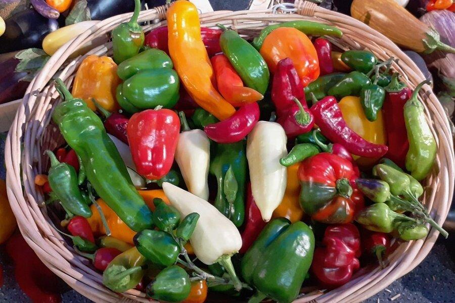 Frühe, weltweit begehrte Handelsware: Paprika.