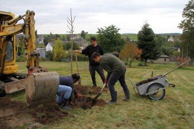 Markus Klitzsch (Mitte) bepflanzt mit Helfern die Streuobstwiese. Alle Bäume erhalten einen Drahtkorb zum Schutz vor Wühlmäusen.