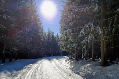 Auch das Wetter spielte in diesem Winter besonders gut mit. An manchen Tagen konnten die Skilangläufer unter strahlend blauem Himmel die optimalen Bedingungen genießen, die die regionalen Loipen zu bieten hatten.