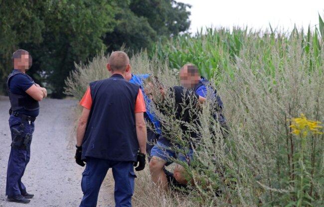 DasEnde einer Verfolgungsjagd. Polizeibeamte nehmen den geflüchteten Autodieb in einem Maisfeld neben der Autobahn 4 fest.