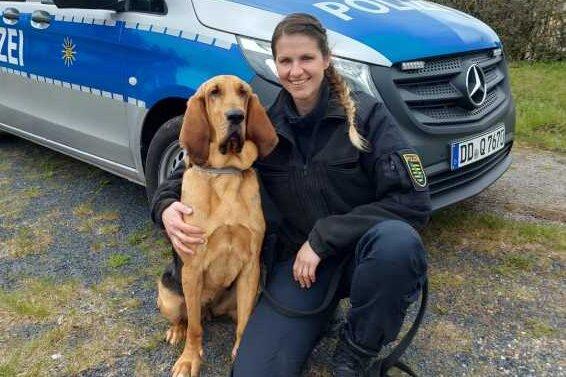 Spürhund Hazel findet vermissten 33-Jährigen