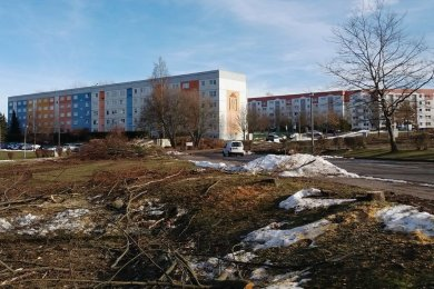 Im Wohngebiet Am Wasserturm in Limbach-Oberfrohna werden seit einigen Tagen etliche Bäume gefällt. Das ist notwendig, weil auf dem Areal Bauarbeiten bevorstehen.