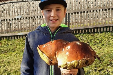 Einen mehr als 1,7 Kilogramm schweren Steinpilz hält Jannik Grimm in den Händen.