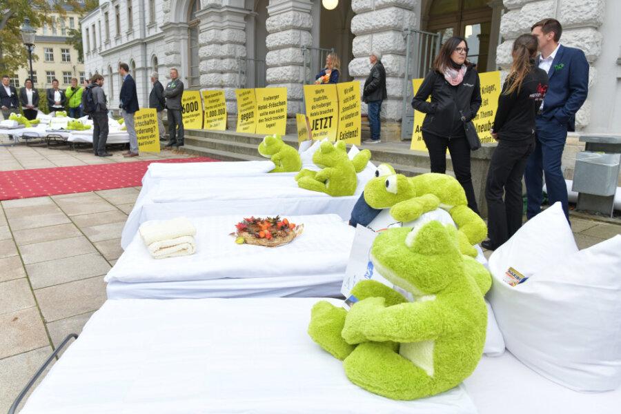 Freiberger Hoteliers protestieren mit Betten und Fröschen