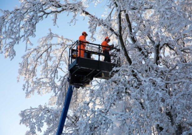 THW-Mitarbeiter helfen, Schneebruch an der Verbindungsstraße zwischen Langenstriegis und Frankenberg zu entfernen.