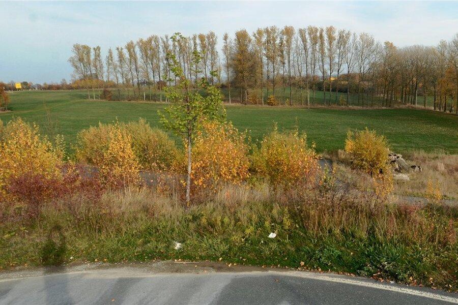 Auf der freien Fläche vor dem links im Hintergrund befindlichen Kreisverkehr wollte die Firma bauen. Der Flächenkauf wurde jetzt rückabgewickelt.