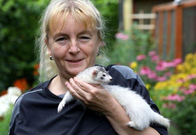 Ines Mey zeigt, wie anhänglich die Tiere eigentlich sind. Viele Menschen verbinden Frettchen nur mit einem unangenehmen Geruch.