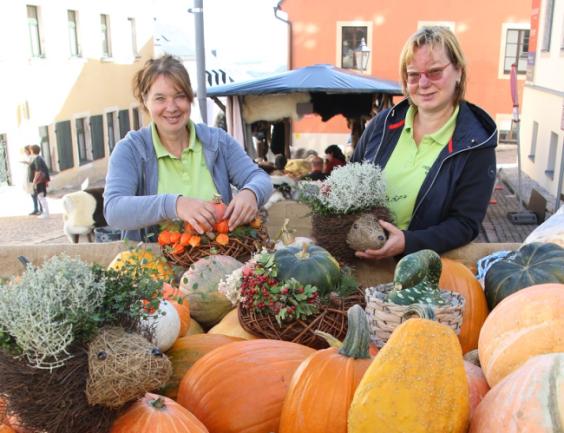 Kürbisse laden beim Naturmarkt zum Kauf ein.