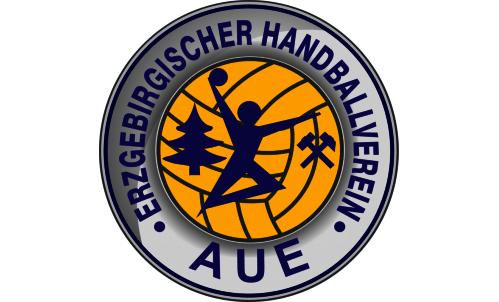 EHV Aue verliert das dritte Spiel in Folge