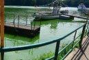 Aktuell ist das Wasser im Stausee grün gefärbt.