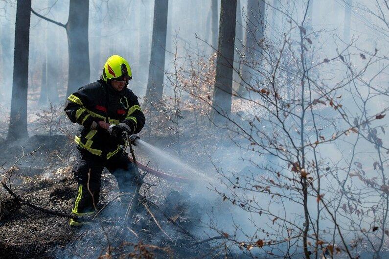 Feuerwehr rückt zu Brand im Rochlitzer Bergwald aus