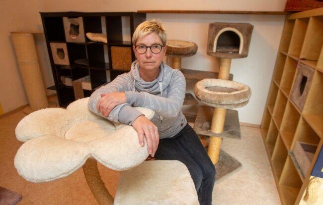 Kerstin Queck in ihrem Katzenhotel in Mechelgrün: Weil kaum noch jemand verreist, ist der Unternehmerin fast der gesamte Umsatz weggebrochen -obwohl sie ihr Geschäft eigentlich weiterhin betreiben darf.