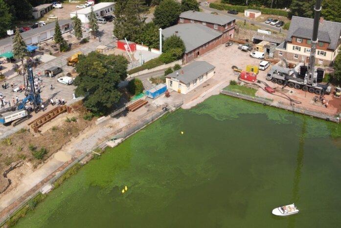 Blick am vergangenen Mittwoch auf die Baustelle des Hafens der Talsperre Kriebstein. Das Wasser ist grün, im Uferbereich sind die grün aussehenden Blaualgen besonders gut zu sehen. Der Wind hat die Algen am Wochenende noch weiter an den Rand getrieben.