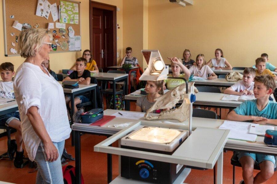 Annett Deutrich unterrichtet am Mathesius-Gymnasium in Rochlitz Schüler der Klasse 5/4 in Biologie.