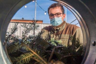 Benjamin Nikolaizig verkauft Weihnachtsbäume vor dem Simmel-Markt in Aue. Das Geschäft läuft ähnlich gut wie im Jahr zuvor.