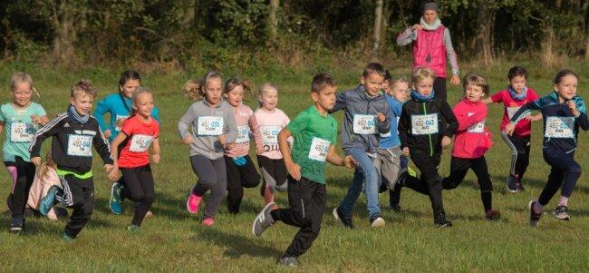 Die Zweitklässler der Marienberger Herzog-Heinrich-Grundschule waren beim Crosslauf rund um den Lautaer Spielplatz voll bei der Sache.