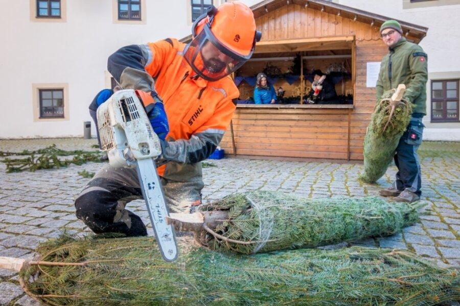 Märchenwald lädt in Zschopau zu einem Spaziergang ein
