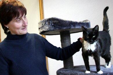 Diana Glöckner mit Katze Laura, die Mitte Oktober auf der Bahnhofstraße in Lauter gefunden wurde. Das Tier hat einen unheilbaren Nierenschaden und sucht für seine letzten Tage ein liebevolles Zuhause.