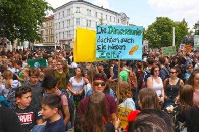 Anhänger der Fridays-for-Future-Bewegung ziehen am Freitag wieder durch Zwickau