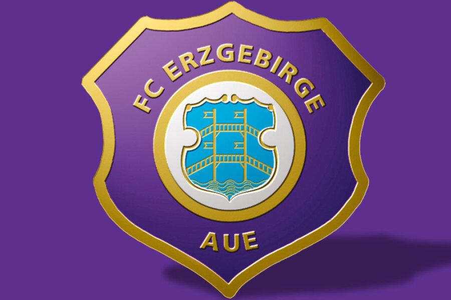 Erzgebirge Aue unterliegt VfB Stuttgart mit 0:1