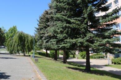 Im Innenhof der Schule wäre Platz für einen Anbau, in dem die neue Schulspeisung untergebracht werden könnte.